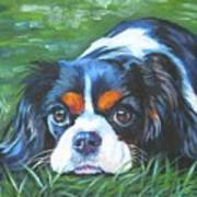 Cavalier King Charles Spaniel Tricolor Art Print by Lee Ann Shepard