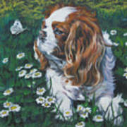Cavalier King Charles Spaniel With Butterfly Art Print by Lee Ann Shepard