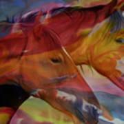 Cavalos Art Print