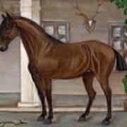 Cavalry Horse Art Print by Anna Folkartanna Maciejewska-Dyba