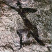 Cave Art, Algeria Art Print