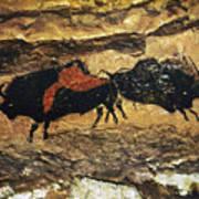 Cave Art: Bison Art Print