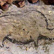 Cave Art: Rhinoceros Art Print