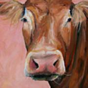 Cecilia The Cow Art Print