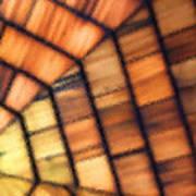 Cedar Glass Art Print