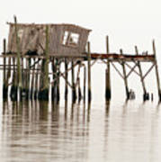 Cedar Key Structure Art Print by Patrick M Lynch