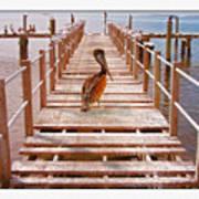 Cedar Key Wharf Art Print
