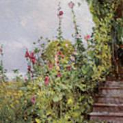 Celia Thaxters Garden Art Print
