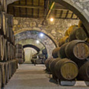 Cellar With Wine Barrels Art Print