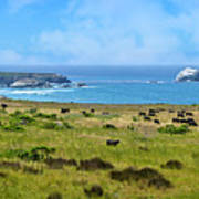 Central Coast Panorama - Hwy 1 Art Print by Lynn Bauer