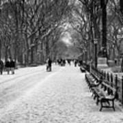 Central Park 2 Art Print by Wayne Gill
