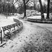 Central Park 3 Art Print by Wayne Gill
