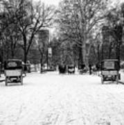 Central Park 7 Art Print