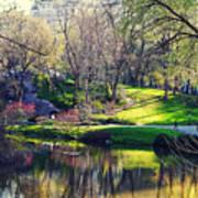 Central Park Colors Art Print