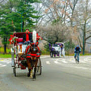Central Park Horse And Buggy Rides New York City Art Print