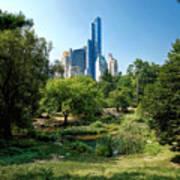 Central Park Ny Art Print