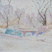 Central Park Record Early March Cold Circa 2007 Art Print