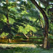 Cezanne: Etang, 1877 Art Print