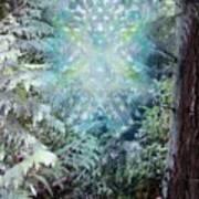 Chalice-tree Spirit In The Forest V3 Art Print