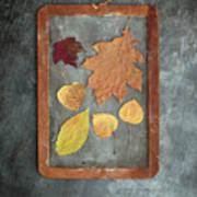 Chalkboard Leaves Art Print