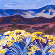 Chamisa And Mountains Of Santa Fe Art Print