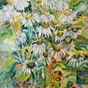 Chamomile Art Print by Therese AbouNader