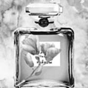 Chanel Grey Flower Art Print