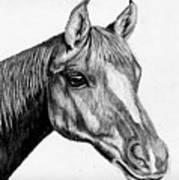 Charcoal Horse Art Print