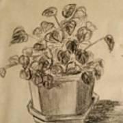Charcoal Planter Art Print
