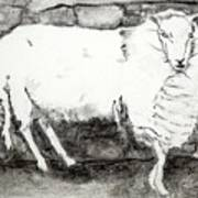 Charcoal Sheep Art Print