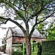 Charleston Church Street Live Oak And Ivy Art Print