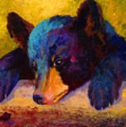 Chasing Bugs - Black Bear Cub Art Print
