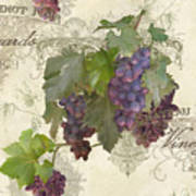 Chateau Pinot Noir Vineyards - Vintage Style Art Print