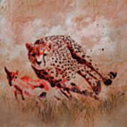 Cheetah Hunting Art Print