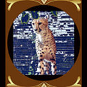 Cheetah Lean And Mean Art Print