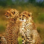 Cheetah Siblings Art Print