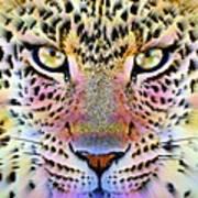 Cheetah Vi Art Print
