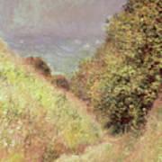 Chemin De La Cavee Pourville Art Print
