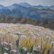 Cherokee Wildflowers Art Print
