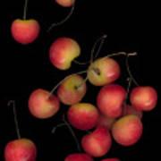 Cherries Multiplied Art Print