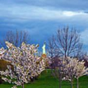 Cherry Blossom Liberatum Art Print