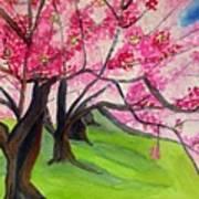 Cherry Blossom Sakura Art Print