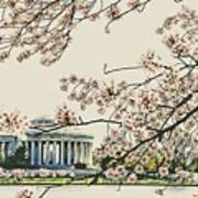 Cherry Blossom Tidalbasin View Art Print