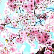 Cherry Blossom Watercolor Art Print