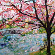 Cherry Blossoms And Bridge 3 201730 Art Print