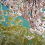 Cherry Blossoms Close Up Six Art Print
