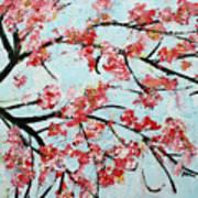Cherry Blossoms V 201631 Art Print