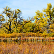 Cherry Creek Pond In Autumn Art Print
