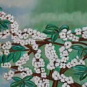 Cherry Tree Rich In Flowers Art Print