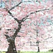 Cherry Trees Art Print by Patrick Grills